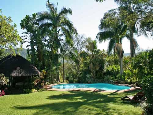 Zwembad in Hazyview - Zuid-Afrika rondreizen