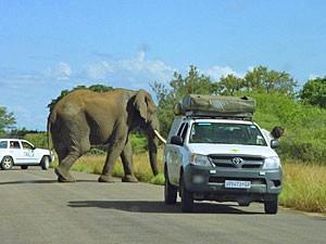 Reisadvies Zuid-Afrika