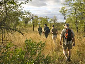 Wandelsafari - big five spotten Zuid-Afrika