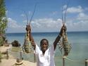 Mozambique - Zuid-Afrika rondreis