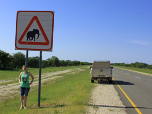 Bord met olifant