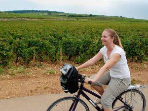 Zuid Afrika op de fiets tussen de wijnranken