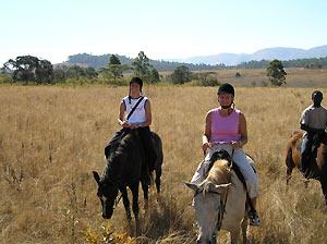 Paardrijden in Swaziland