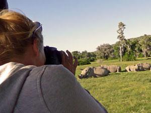 Neushoorns fotograveren in Oostkaap
