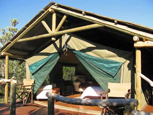 Je Zuid-Afrika safari lodge