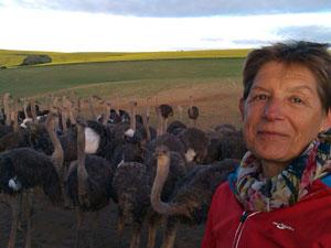 reiziger bij struisvogelfarm - kaapstreek