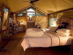 Safari tent: bijzondere overnachting