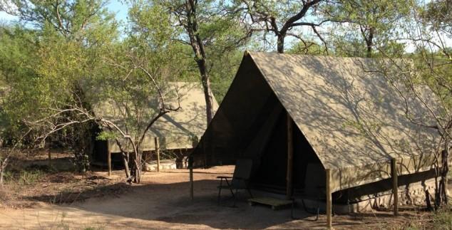 Bushcamp walk-in tenten - Kruger