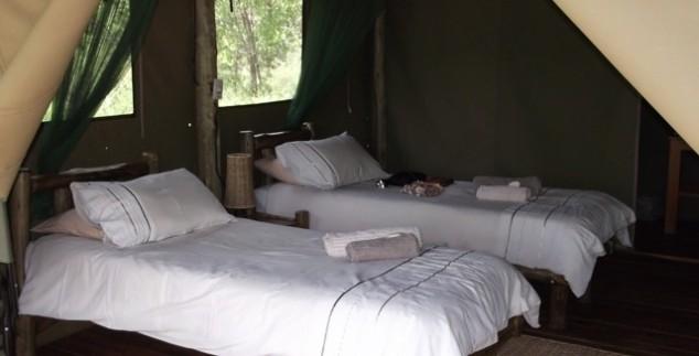 Comfort tent bush camp