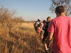 Wandelsafari Big 5 - Rondreizen Mozambique