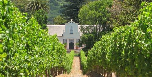 Zuid Afrika reizen wijnboerderij