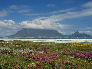 Zuid-Afrika reis - tafelberg