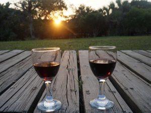 Stellenbosch Zuid-Afrika vakantie
