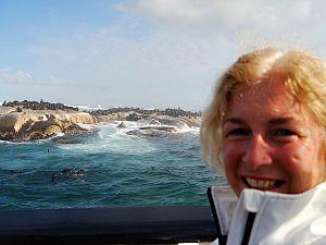 Robben bij Duikerseiland