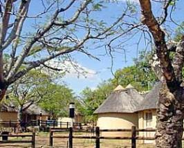 Krugerpark bungalow