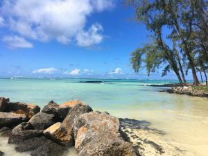 Zuid-Afrika combineren met Mauritius
