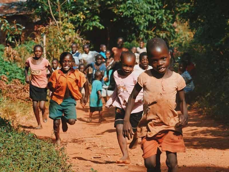 alle-beetjes-helpen Port Elizabeth Zuid-Afrika