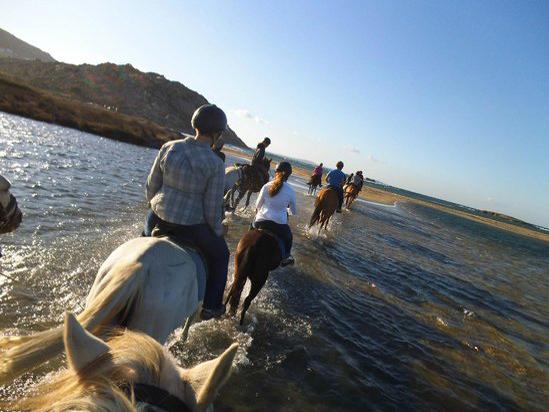 Naxos Griechenland Kykladen Ausritt Pferdereiten