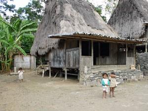 Kinder auf Flores vor einem Holzhäuschen