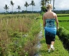 Wandern durch Reisterrassen und Kaffeeplantagen