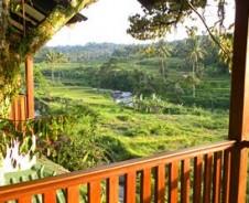 Bogor zwischen Tradition und Moderne