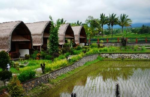 Standardunterkunft in Tetebatu.