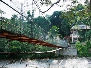 Gunung Leuser Nationalpark in Bukit Lawang