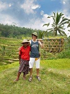 Reisender hilft bei der Reisernte in Tirtagangga