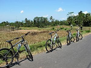 Fahrräder am Wegesrand entlang Reisfelder