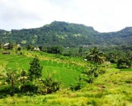Grünes Tal in Sidemen