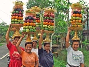 Balinesische Frauen tragen bunte Opfergaben auf dem Kopf