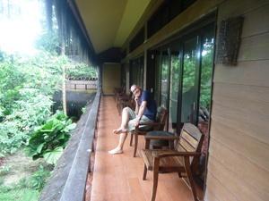 Blick ins grüne Dickicht vom Balkon aus