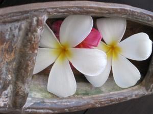 Blumen während des Spa Besuches - Highlights von Java und Bali