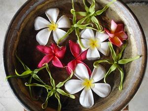 Bali Flitterwochen - Blumen als Opfergabe