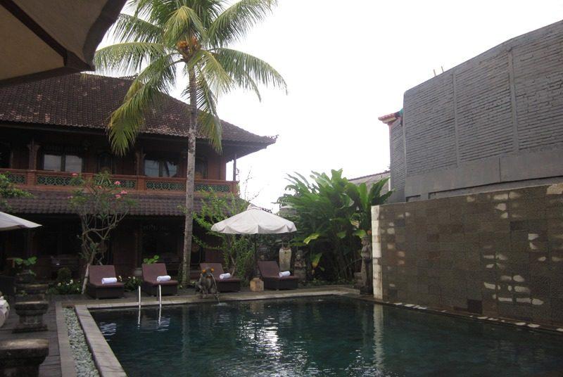 Swimmingpool in der Budget-Unterkunft in Ubud auf Bali