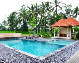 Entspannung im Pool des Budgethotels Ubud