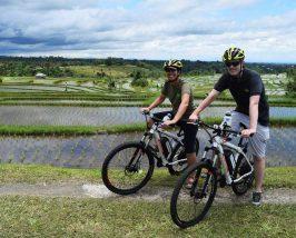 Mit dem Fahrrad entlang der Reisterrassen von Jatiluwih