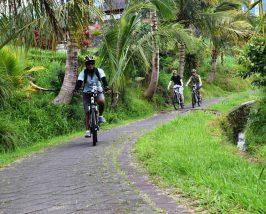 Fahrradtour mit Guide in Jatiluwih