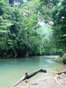 Dschungellandschaft in Tangkahan auf Sumatra.