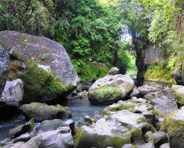 Nahezu unberührte Natur im Canyon Beji Guwang