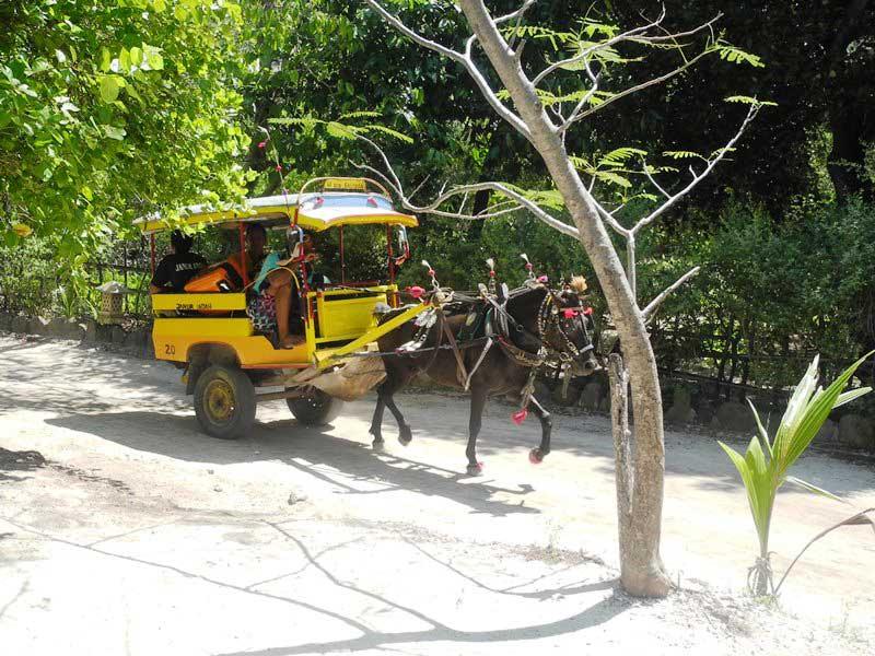 Mit dem Cidomo kommen Sie auf entspannte Art und Weise zu Ihrem Hotel auf Trawangan