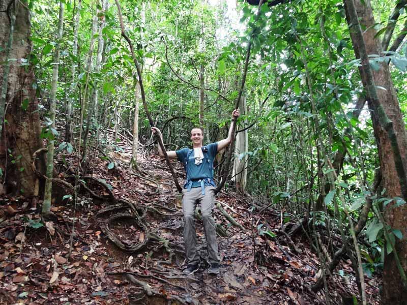 Schaukeln auf Lianen im Dschungel von Bukit Lawang