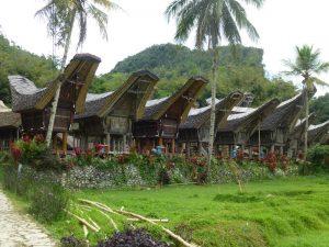 Ein typisches Dorf der Toraja in der Nähe von Rantepao.