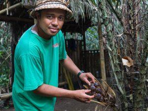 Indonesien - Guide auf Plantage - Sibetan