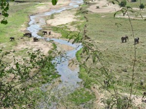 Tarangire Nationalpark - Tansania Highlights