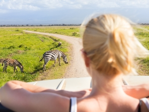 Reise mit Blick auf Zebras