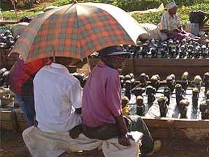 Auch ein Regenschirm kann als Schutz vor der Sonne nützlich sein