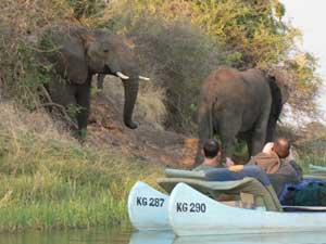 Arusha Nationalpark Kanutour Elefanten Tansania