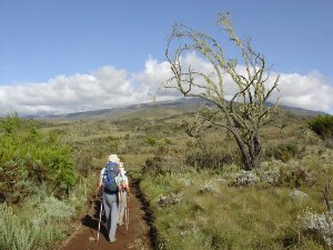 Marangu Route Tansania Kilimanjaro Trekking