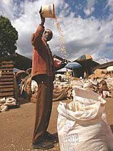 Tansanier mit Getreidesack